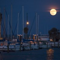image 4178-harbor-moonrise-jpg